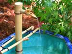 Custom Made Japanese Style Bamboo Water Spout
