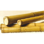 120/150mm Yellow Bamboo Poles 2m and 4m length Small Bundle